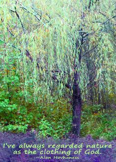 Weeping Willow tree and a nature quote.
