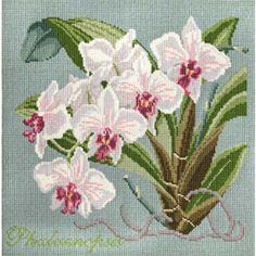 Elizabeth Bradley Elizabeth Bradley Needlepoint Kits - Exotic Orchids (USA)