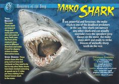 Name: Mako Shark Category: Monsters of the Deep Card Number: 39 Front: Mako Shark Monsters of the Deep Card 39 front Back: Mako Shark Monsters of the Deep Card 39 back Trading Card: All Sharks, Types Of Sharks, Marine Archaeology, Shark Facts, Underwater Creatures, Wild Creatures, Marine Biology, Animal Facts, Shark Week