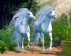 """Magic - Unicorn Pride - 32"""" x 44"""" PANEL - DIGITAL DESIGNER PRINT"""