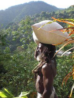 Jamaica Jahmaica  The Beautiful