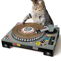 Katzen Kratzbaum #cat #treee