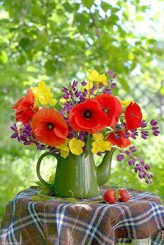 Beautiful Flower Arrangements, My Flower, Fresh Flowers, Flower Power, Beautiful Flowers, Garden Trees, Garden Art, Flowers Perennials, Planting Flowers