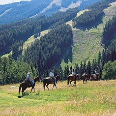 Love, love, love to go back....Vail/Beaver Creek, Colorado: the country's largest ski resort has a vibrant summer arts scene that shouldn't be missed. http://www.familycircle.com/family-fun/travel/best-ski-towns-for-summer-vacations/#