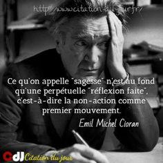 http://www.citation-du-jour.fr/citations-emil-michel-cioran-187.html