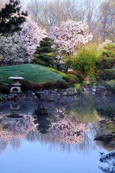 wonderful spring is here by CarinaMcKee Japanese garden at Fairmount Park, Philadelphia, Pennsylvania