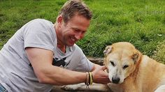 He reunites troops with overseas dogs