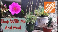 Home Depot Shop With Me and Haul