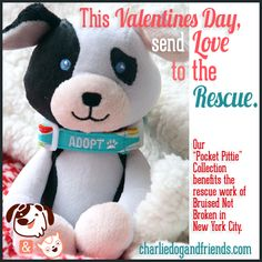 "Send Adala -- or any toy from our ""Pocket Pitties"" collection ($16.99) -- for Valentine's Day, and you're also giving four dollars to Bruised Not Broken, one of NYC's leading advocates for homeless pit bulls.  Every toy from our ""Bruised Not Broken"" edition is based on a real-life pit bull rescued from the New York shelter system."