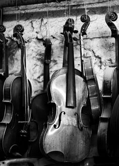 musical instruments, waiting to make their voices heard Sound Of Music, Music Is Life, My Music, Reggae Music, Musica Celestial, Violin Music, Violin Shop, Violin Makers, Violin Art