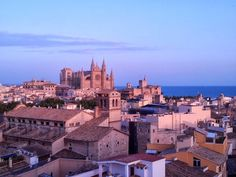 View of Palma Cathedral from Hotel de Almudaina