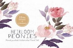 Heirloom Peonies - Watercolor Floral by SmallHouseBigPony on @creativemarket Watercolor Flowers, Watercolor Paintings, Watercolors, Page Decoration, Decorations, Vintage Scrapbook, Floral Illustrations, Floral Bouquets, Peonies