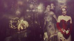 brides of dracula novel - Google-haku