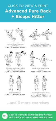 Advanced Pure Back + Biceps Hitter – click to view and print this illustrated exercise plan created with #WorkoutLabsFit