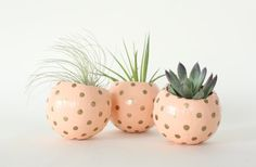 Peach & Gold Air Plant Planter Pod. Hand by ThriftedandMade
