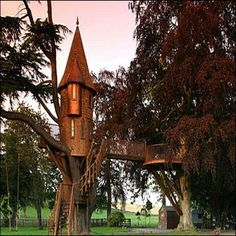 Victorian....Now that's a tree house ITS LIKE A TINY HOGWARTS!