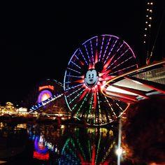 Disneyland Adventure 2014