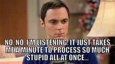 "TBBT ""It just takes me a minute to process so much stupid all at once..."""