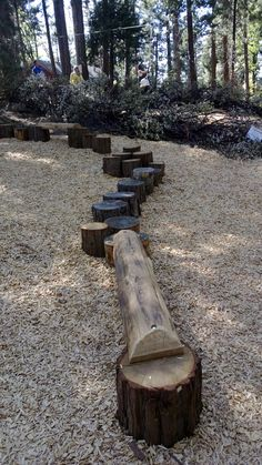 natural log balance beam and stumps. Turn top of log into bench. Stumps could lead to climbing tower.