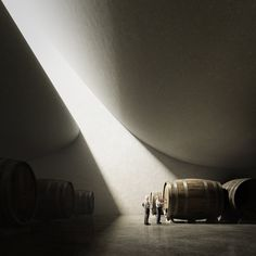 Peter Zumthor - Pingus Winery (Unbuilt Series)