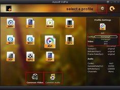 Aunsoft VidPie, rápido conversor gratuito para archivos de vídeo y audio
