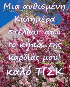 Good Morning Good Night, Quotes, Decor, Quotations, Decoration, Decorating, Quote, Shut Up Quotes, Deco