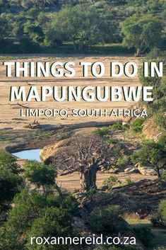 15 things to do at Mapungubwe National Park, Limpopo, South Africa Kruger National Park, National Parks, All About Africa, Slow Travel, African Safari, Africa Travel, Heritage Site, Virtual Tour, Cape Town