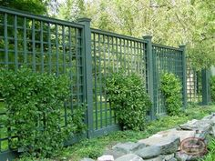 Lattice fencing is a great look, love the green color.