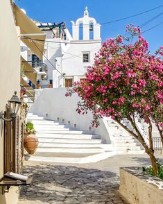 "George Kormpos 🇬🇷 sanoo Instagramissa: ""Check my accounts ⤵️ Follow @ALLURING_GREECE and @ALLURING_ISLANDS #wu_Greece #greeceshotz #travel_greece #ok_streets #eros_greece…"" Check My Account, Greece Travel, Islands, Sidewalk, Side Walkway, Greece Vacation, Walkway, Walkways, Pavement"