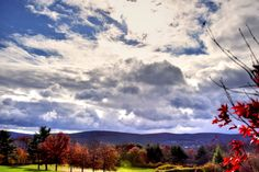 A salute from Mother nature.  Red, white and Blue Fall scene for Veteran's Day.  11/11/2016