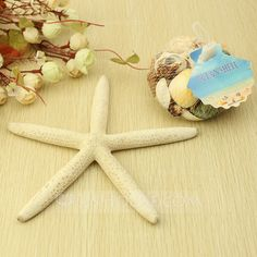[£5.00] Starfish and Seashell Decorative Accessories