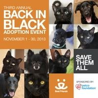"Get ready for Back in Black 2013! OBG is participating in Best Friends Animal Society's 3rd Annual ""Back in Black"" campaign to increase awar..."