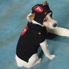 """Шапка для собаки. - вязание для собак и кошек , свитера, кофты, попоны для собак, комбинезоны, шапочки, обувь для собак, скачать бесплатно книгу Корин Ниснер """"Вяжем для четвероногих модников"""", needleworkdogss Jimdo-Page!"""