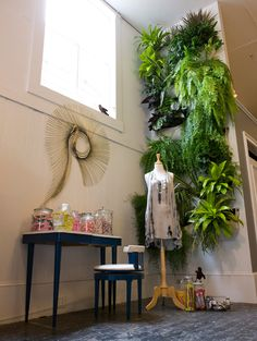 I am in awe with the idea of air plants, a living wall, a vertical garden right at . Living Wall Planter, Wall Planters, Vertikal Garden, Vertical Farming, Small Space Gardening, Interior Plants, Plant Wall, Indoor Plants, Indoor Gardening