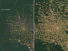 Evolution dans l'Etat brésilien du Rondonia entre 2000 et 2012