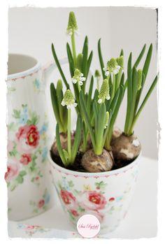Sommerhusliv Hele Aaret | GreenGate & spring bulbs