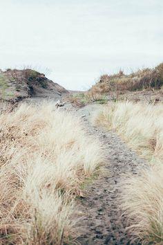Coastal path - looks like a great adventure Photography Beach, Landscape Photography, Nature Photography, Street Photography, Beautiful World, Beautiful Places, Beach Bodys, Landscape Arquitecture, Am Meer