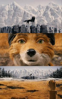 Fantastic Mr Fox..I never noticed that the land was split like that haha