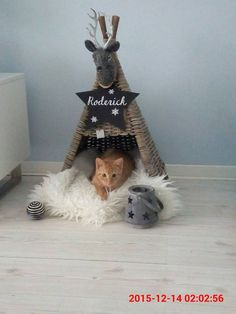 Cats Toys Ideas - 15 Super Fun DIY Cat Tent Ideas to Pursue - Ideal toys for small cats Diy Jouet Pour Chat, Diy Cat Tent, Cat Teepee, Teepee Bed, Diy Pet, Ideal Toys, Cat Room, Small Cat, Cat Furniture