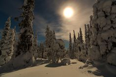 """""""Lapland at moonlight"""" Riisituntra, Lapland, Finland World Pictures, Pictures Images, Nature Pictures, Lapland Finland, Night Forest, See The Sun, Nature View, Sunrises, Beautiful Landscapes"""