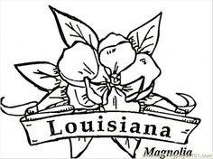 Louisiana Flowers Coloring Page From Category Select 29062 Printable Crafts Of Cartoons Nature Animals Bible And Many More