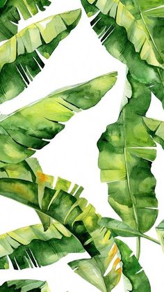 Watercolor background, plant background, watercolor wallpaper, watercolor p Leaves Wallpaper Iphone, Plant Wallpaper, Tropical Wallpaper, Renters Wallpaper, Marble Wallpaper Phone, Plant Background, Watercolor Background, Watercolor Wallpaper, Palm Tree Print