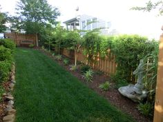 keep the grass in the central zone but use space next to fence for plants or...