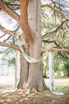 Gatsby Wedding, Tree Wedding, Wedding Arches, Wedding Ceremony Decorations, Wedding Venues, Park Weddings, Outdoor Ceremony, Weeding, Backdrops