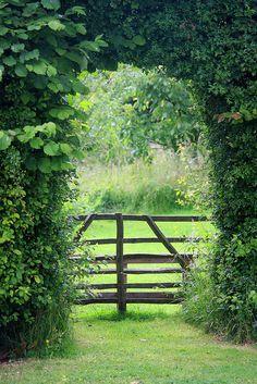 #Klaverdroomtuin Een mooie doorkijk naar het land voor de dieren