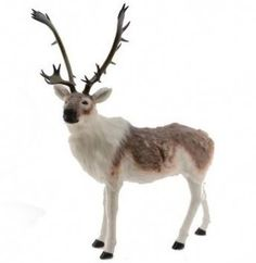 Event Prop Hire: Large Furry Reindeer Prop