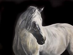 'Morning Light' equine painting by Tony O'Connor whitetreestudio.ie