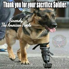 German Shepherd Military K9 Wounded Warrior - Thank You Hero for your Service & God Bless you!