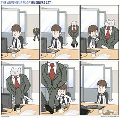 The Adventures of Business Cat Comic Strip, November 07, 2016     on GoComics.com