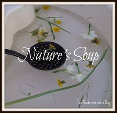 Nature's Soup Sensory Table, Water Play, Blueberry, Tables, Soup, Tableware, Mesas, Berry, Dinnerware